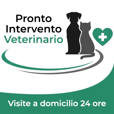 http://www.veterinarionovara.it/