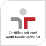 audit logo autoplus