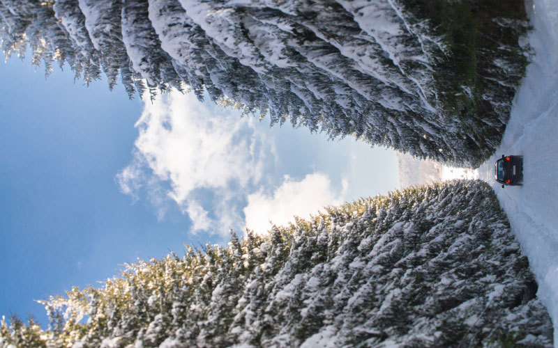 auto-winter-check-sicherheit-schnee-kontrolle-winterreifen-bozen-eppan-suedtirol-corona-abholservice