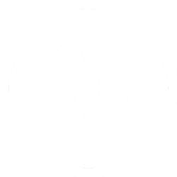 vw-white-logo-1